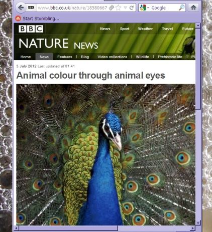 BBC Nature News screen shot