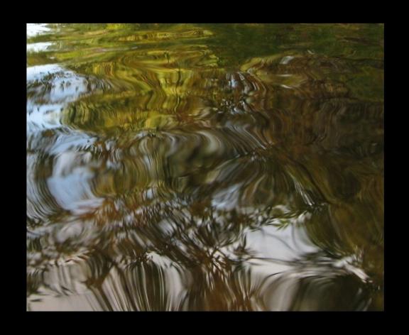 Buddy's Creek photo by keagiles