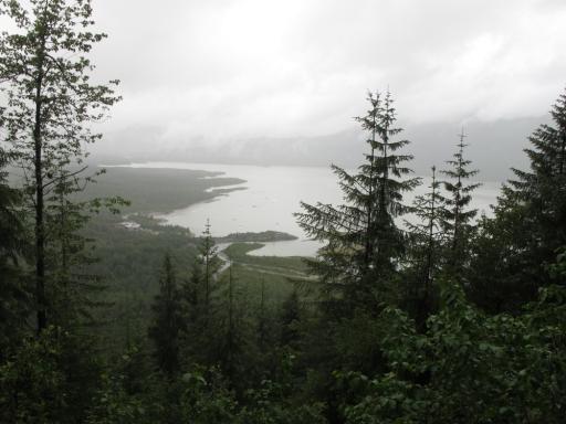 Alaskan Rainforest