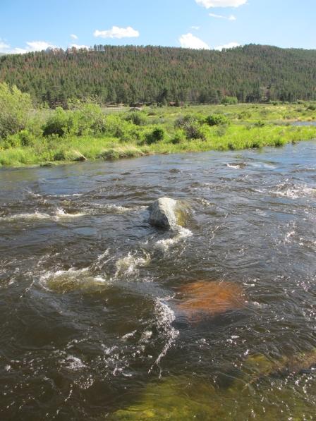 meander stream