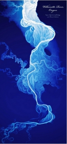 Light-detection and ranging (LiDAR) remote sensing image of the Willamette River