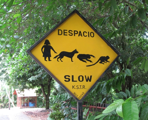 My favorite roadside sign in Costa Rica shows a person, a dog, a sloth, and a squirrel monkey and advises folks to slow down while driving from Quepos to Manuel Antonio.