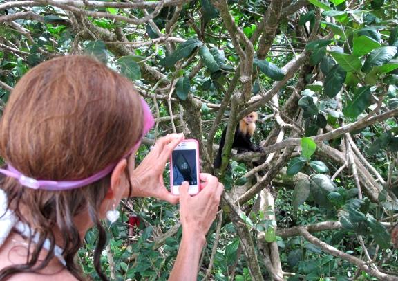 Human and Capuchin interface via iPhone. Photo by keagiles.