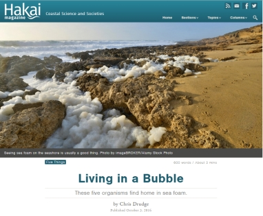Hakai magazine Coast Science and Societies